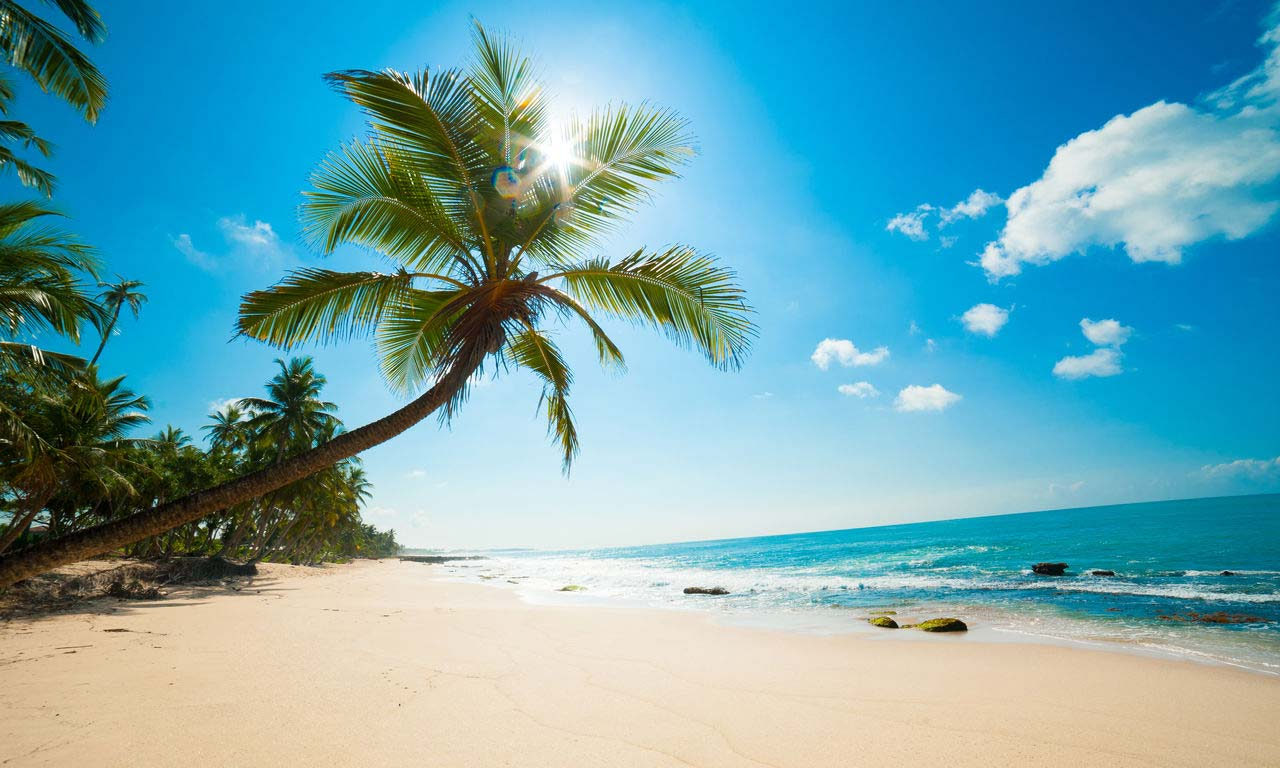 00095 sri lanka urlaub strand palmen relax fernreise urlaub buchen reisen