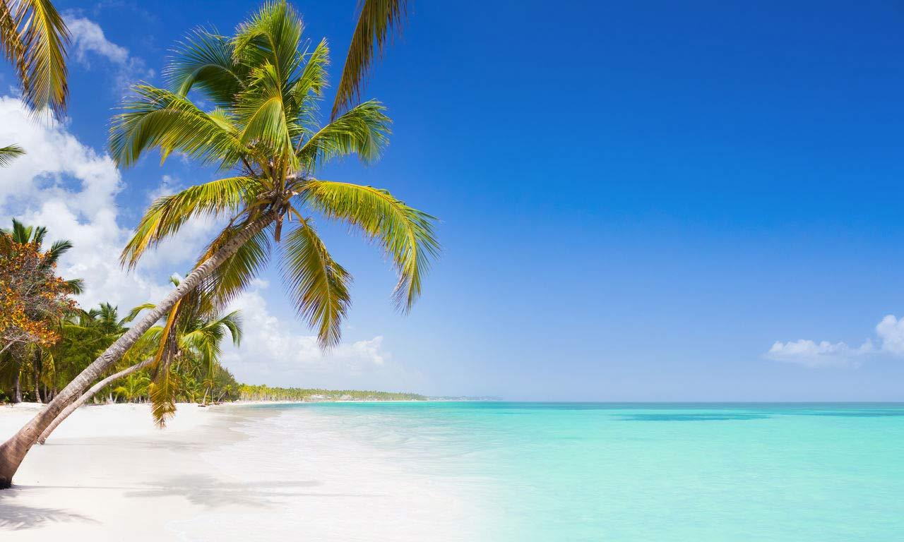 Karibik Dominikanische Republik Punta Cana Kokosnuss Palme Strand Meer Sonne Sand Urlaub