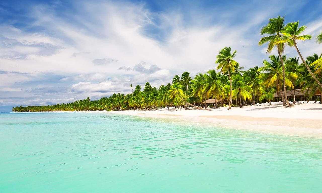 00262 Urlaub in der dominikanische Republik punta cana kokosnuss palme strand meer sonne sand