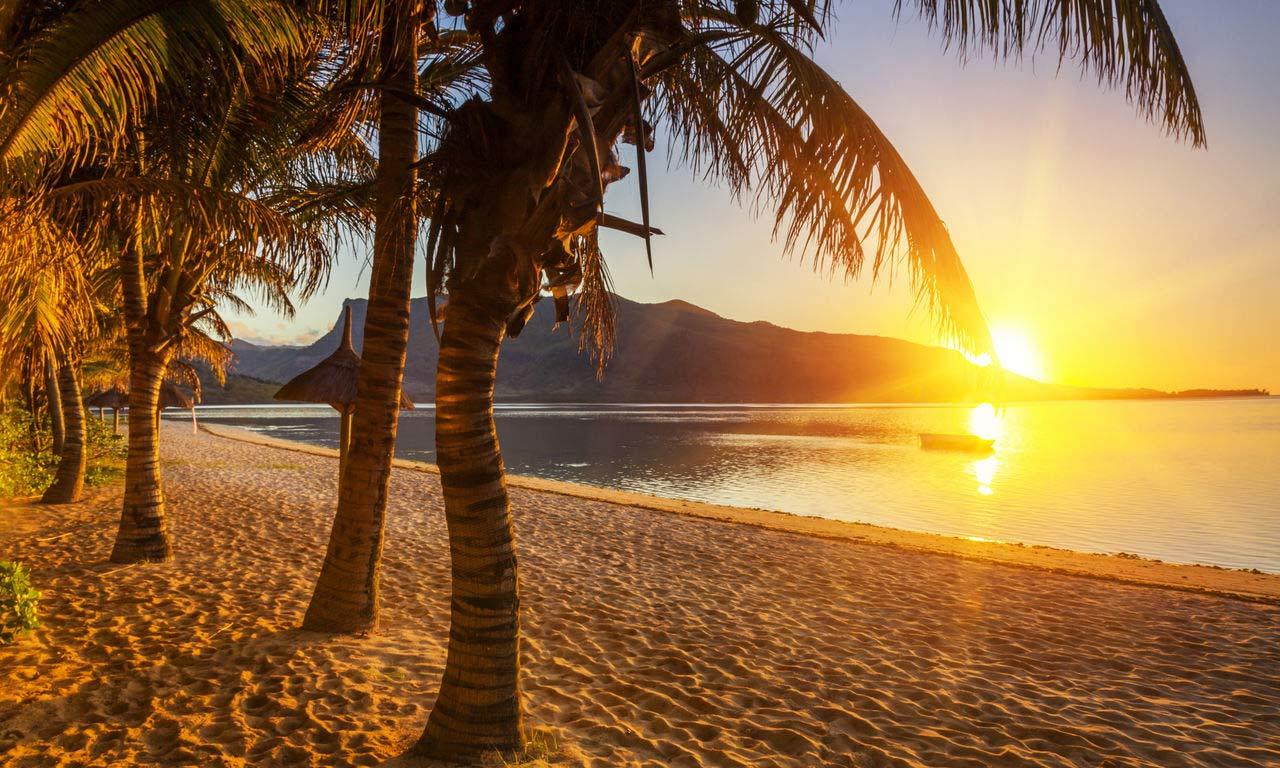 00288 afrika mauritius traumstrand palmen paradies sandstrand sonnenuntergang