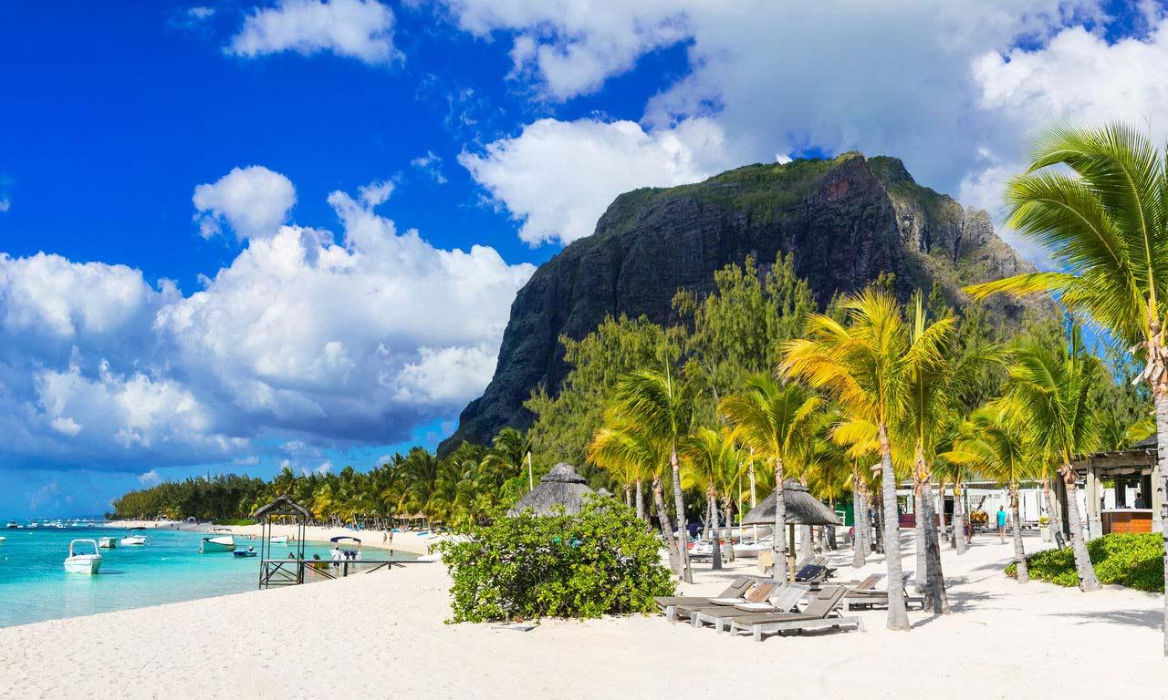 00292 mauritius urlaub le morne felsen traumurlaub paradies palmen