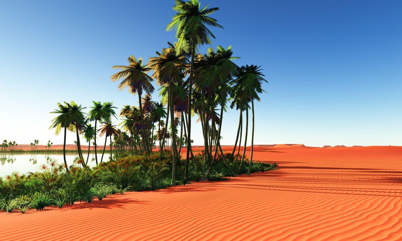 00307 urlaub marokko sonne sommer wüste oase ausflug pauschalreise