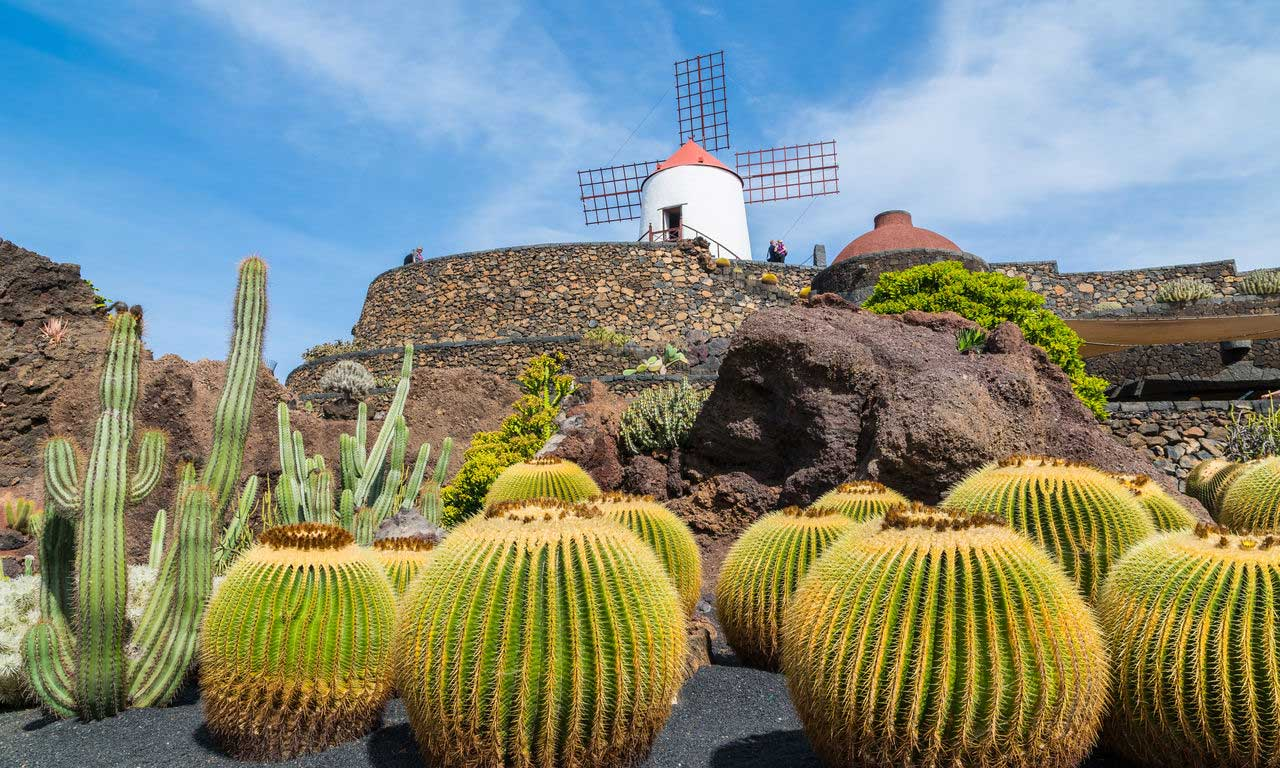 00522 europa spanien kanaren lanzarote pauschalreise all inclusive traumurlaub kaktus garten lava insel guatiza