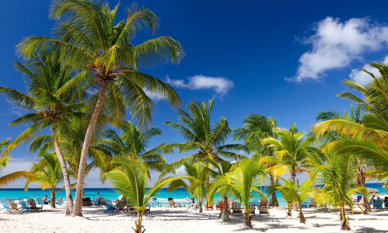 00790 Urlaub dominikanische Republik fernreise karibik traumstrand insel strand sommer palmen paradies
