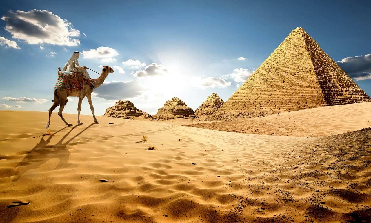00946 Urlaub Ägypten rotes meer sommer wüste kamel ausflug