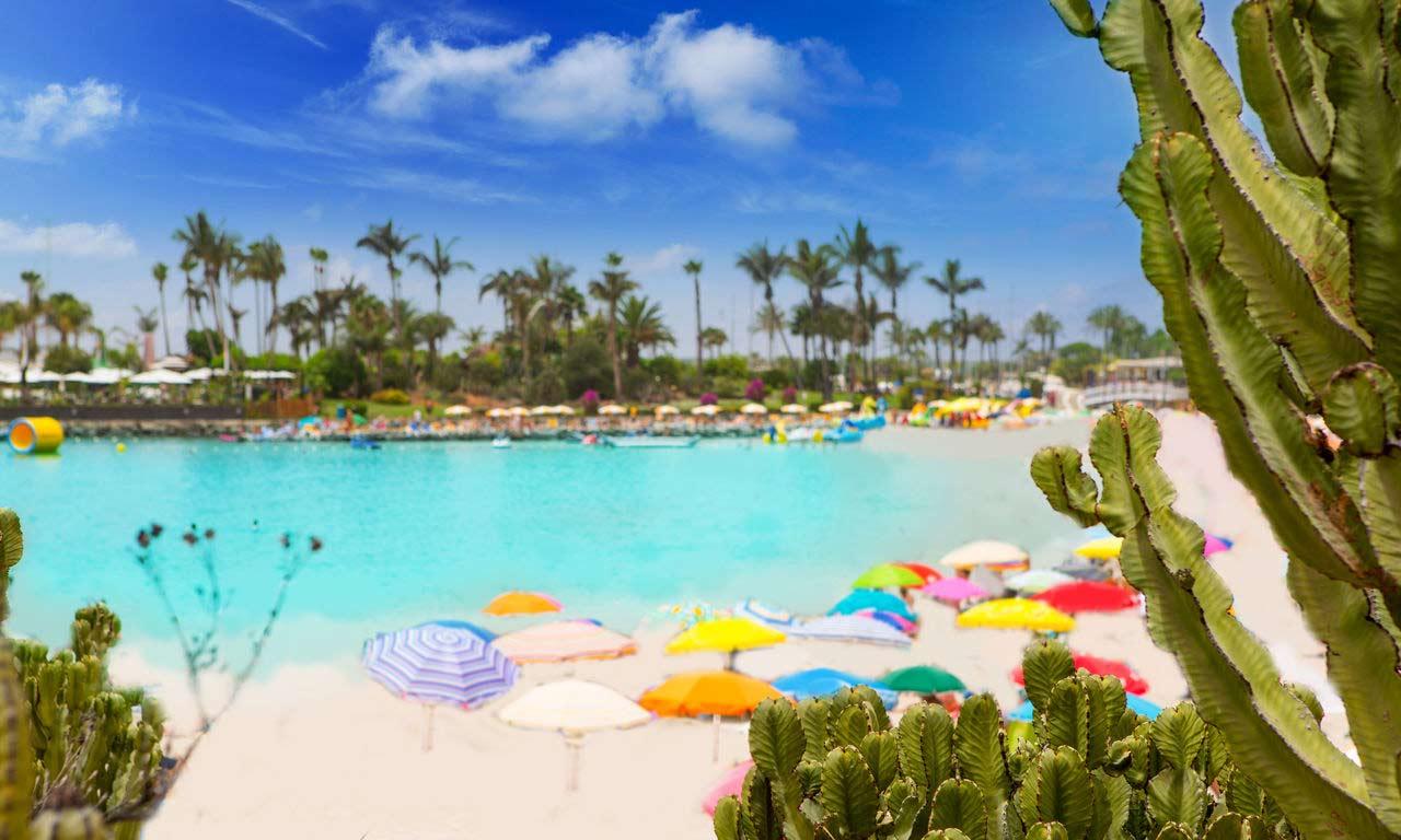 01245 gran canaria spanien urlaub atlantik kanaren insel sommer strandurlaub anfi del mar erholung palmen