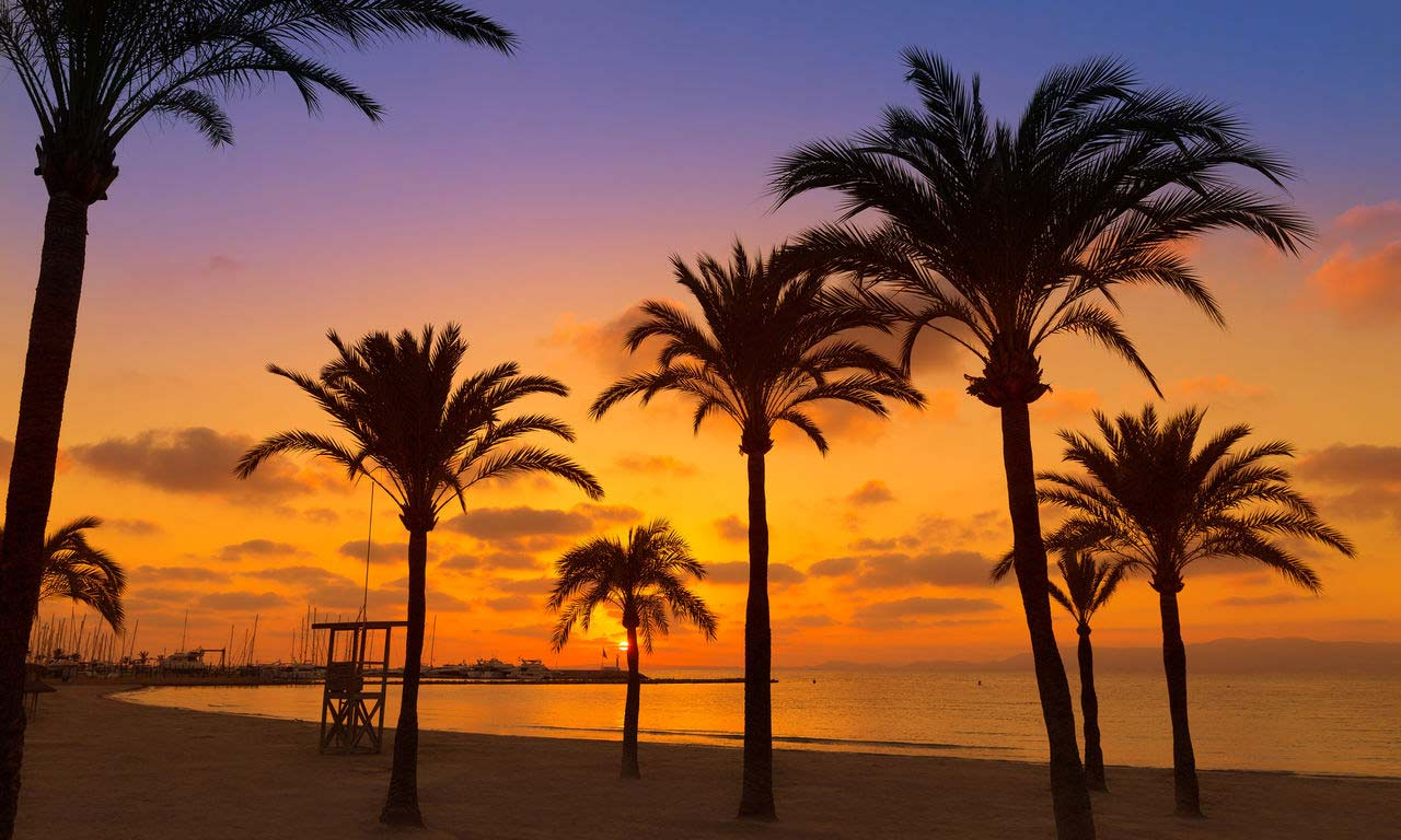 01277 mallorca spanien urlaub mittelmeer balearen insel sommer strandurlaub erholung strand el arenal palma de mallorca sonnenuntergang
