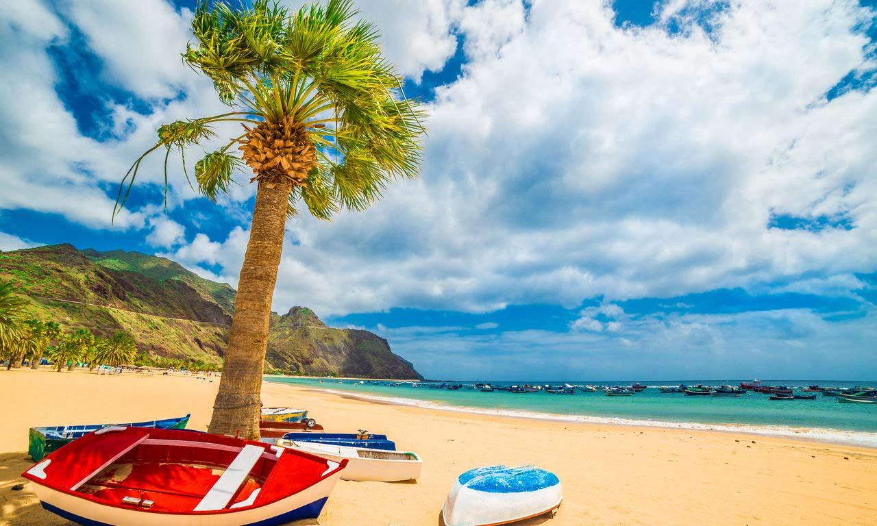 01313 teneriffa urlaub spanien atlantik kanaren insel sommer strandurlaub erholung palmen
