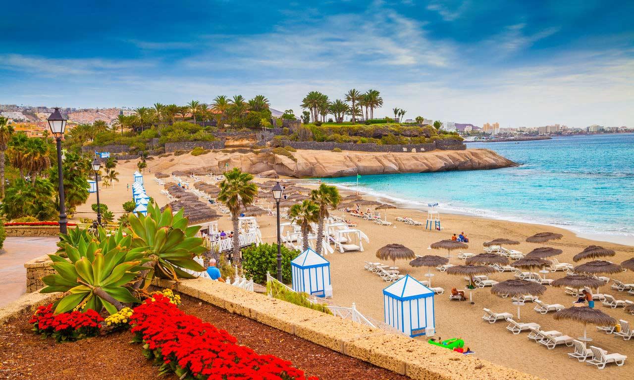 01315 teneriffa spanien urlaub atlantik kanaren insel sommer strandurlaub erholung palmen
