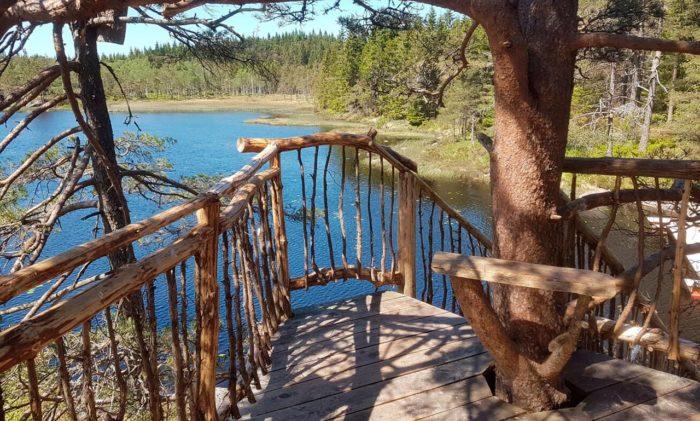 TreeTop Fiddan Ferienwohnung Norwegen Urlaub Im Baumhaus 4