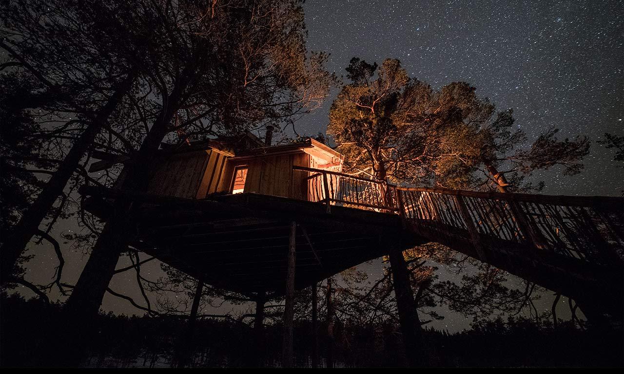 TreeTop Fiddan Ferienwohnung Norwegen Urlaub Im Baumhaus 7