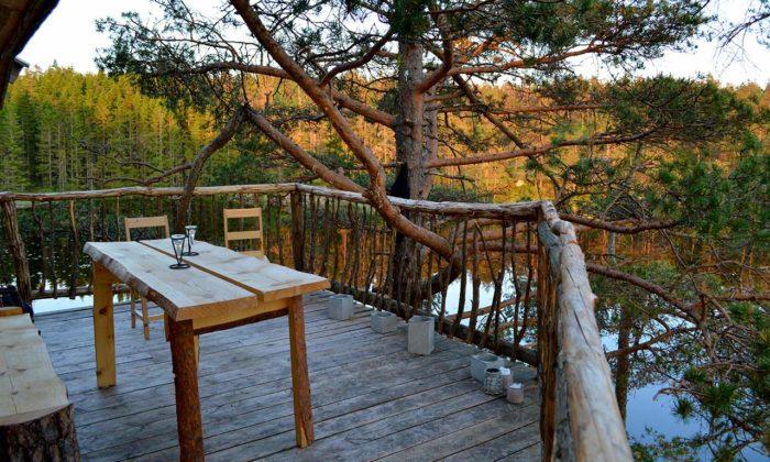 TreeTop Fiddan Ferienwohnung Norwegen Urlaub Im Baumhaus